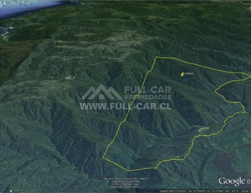 """Espectacular propiedad para industria forestal o agrícola """"El Repil"""""""